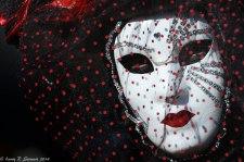 Carnival Venice 2013-28-2